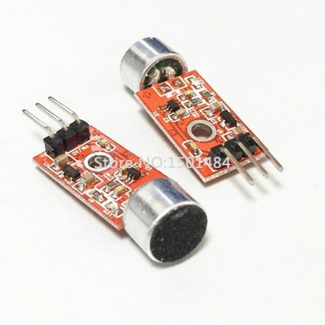 MIC module